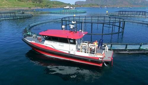 En Alusafe 1500 LDV i aksjon. Foto: Maritime Partner