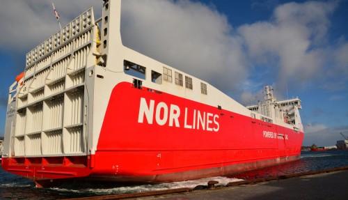 Kvitbjørn. Foto: Nor Lines