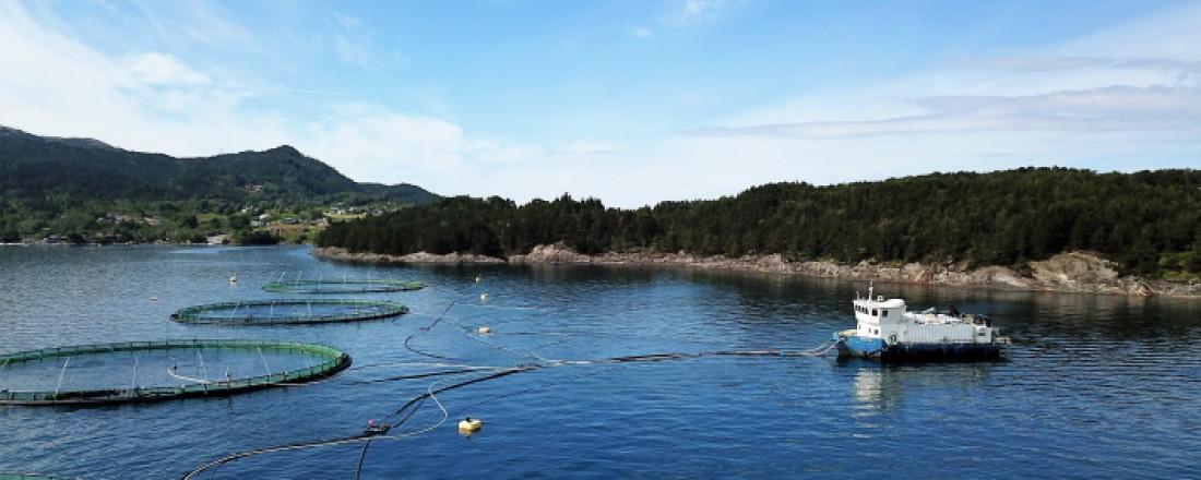 Bremnes Seashore på Loddetå - verdens første fullelektriske oppdrettsanlegg.
