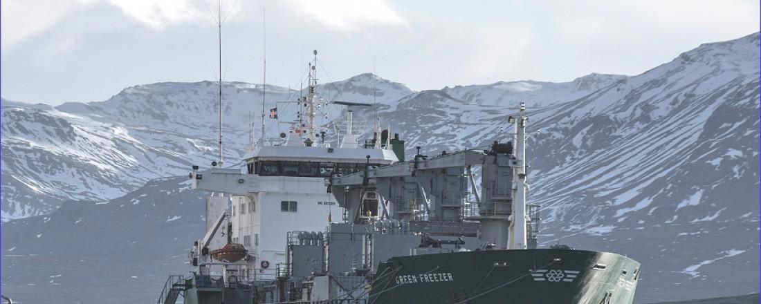 Green Freezer er første skipet i flåten til Green Reefers som skal installere NGT BWMS, installasjonen blir gjennomført i midten av Q2. Foto: Green Reefer