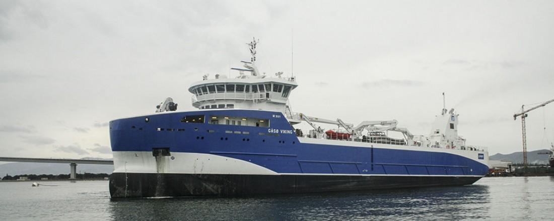 Gåsø Viking