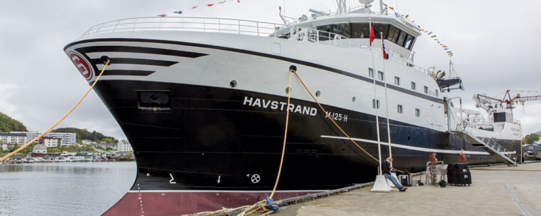 Havstrand