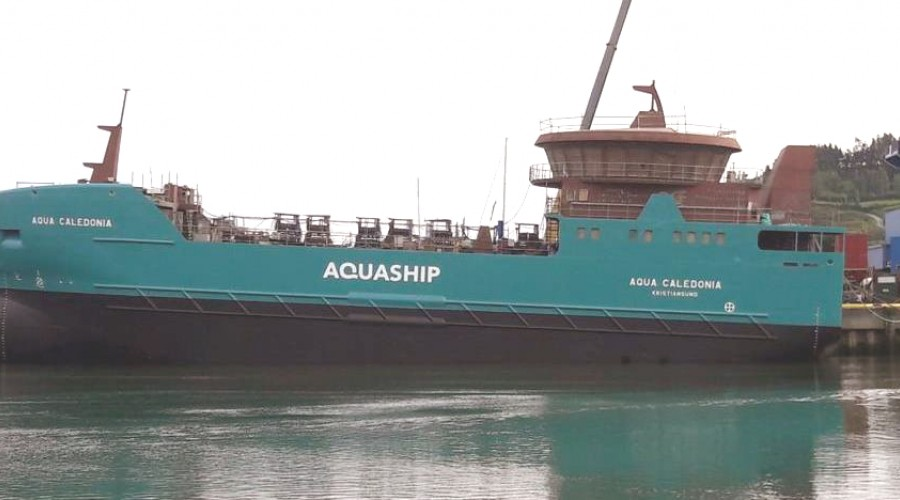 The Aqua Caledonia