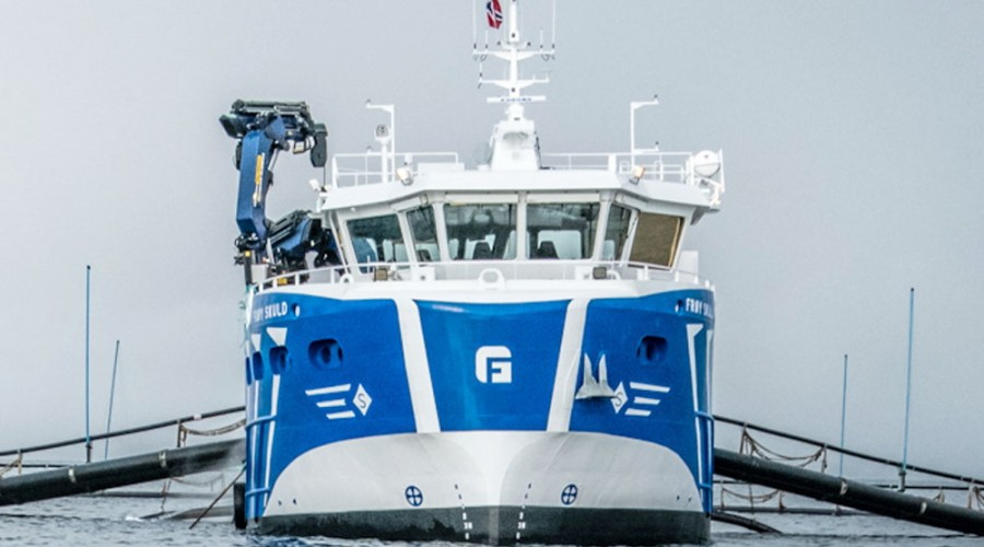 Frøy har i alt 13 båter i bestilling. foto: Frøy