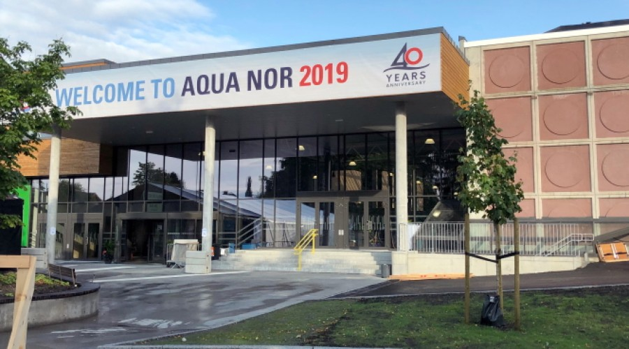 Arrangøren satser optimistisk på at Aqua Nor til høsten blir en fysisk messe i Trondheim Spektrum. Her fra den forrige messen i 2019. Foto: John Inge Vikan.