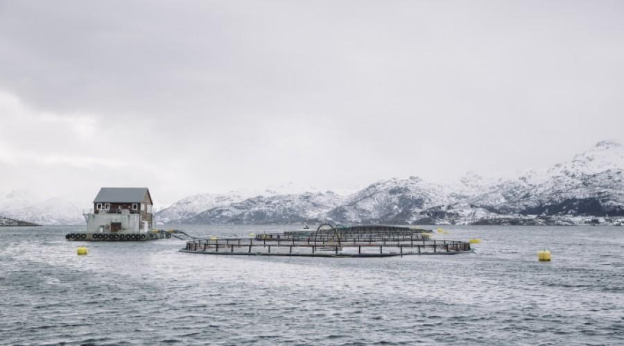 Stadig flere oppdrettsanlegg tar i bruk batteripakker for å redusere utslippene fra forflåtene. Foto: Marius Fiskum / Norges sjømatråd