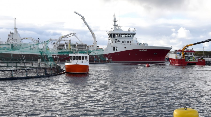 Illustrasjonsbilde: Norsk Fisketransport