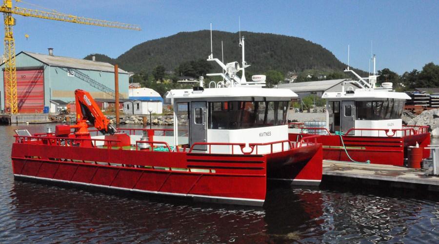 Kvitnes og Kvaløya