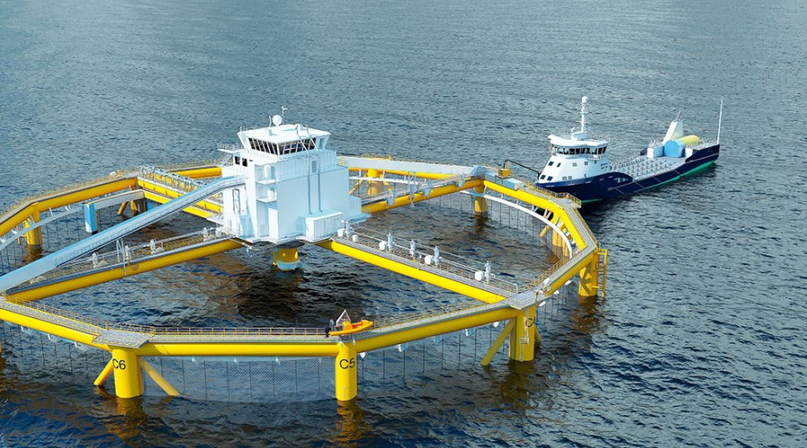 Fiskeforfartøyet Eidsvaag Pioneer leverer mat. Illustrasjon i 3D Salmar.