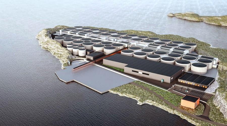 I det første av fire byggetrinn, settes det opp hele 12 tanker med en årlig produksjonskapasitet på 9000 tonn laks. Illustrasjon: Artec Aqua