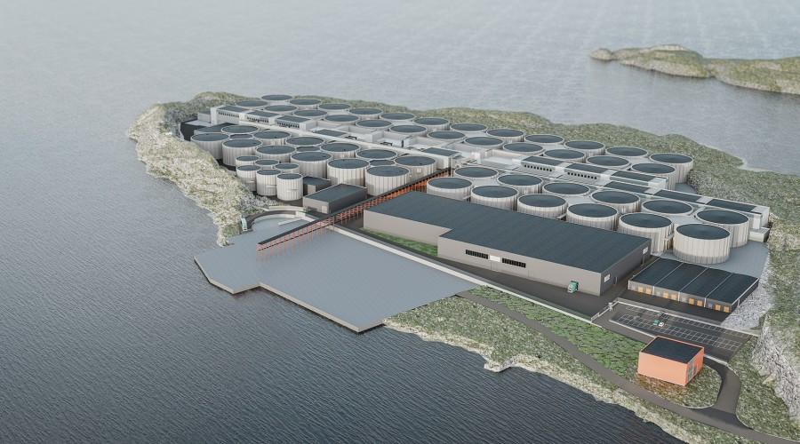 Salmon Evolution er allerede i gang med å bygge et landbasert oppdrettsanlegg i Romsdal, men satser nå også på et samarbeid med sør-koreanske Dongwon Industries, og tenker  på å etablere anlegg i Asia. Foto: Salmon Evolution.