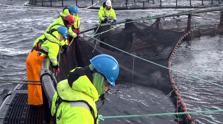 Ytre Namdal fagskole tilbyr nytt studie innen akvakultur. Foto Ytre Namdal fagskole.