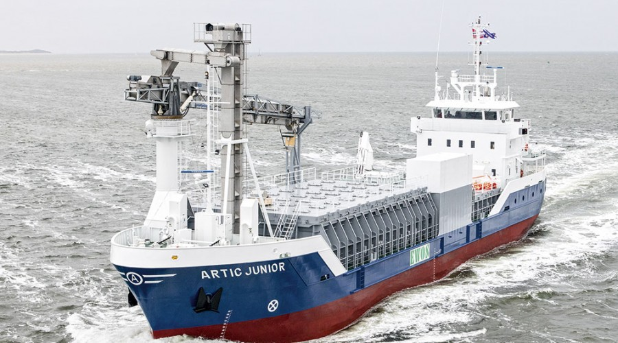 Artic Junior