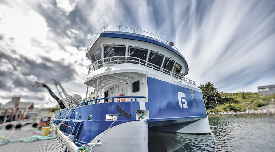 Foto: Frøygruppen