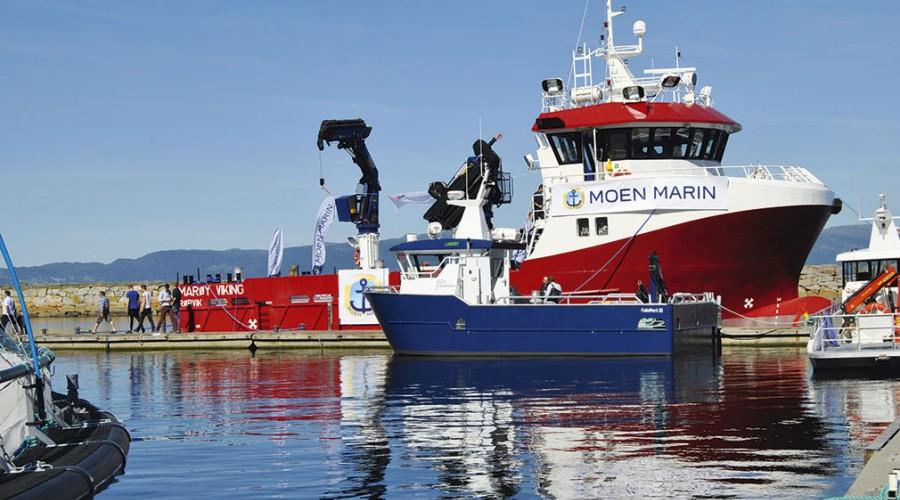 Marøy Viking