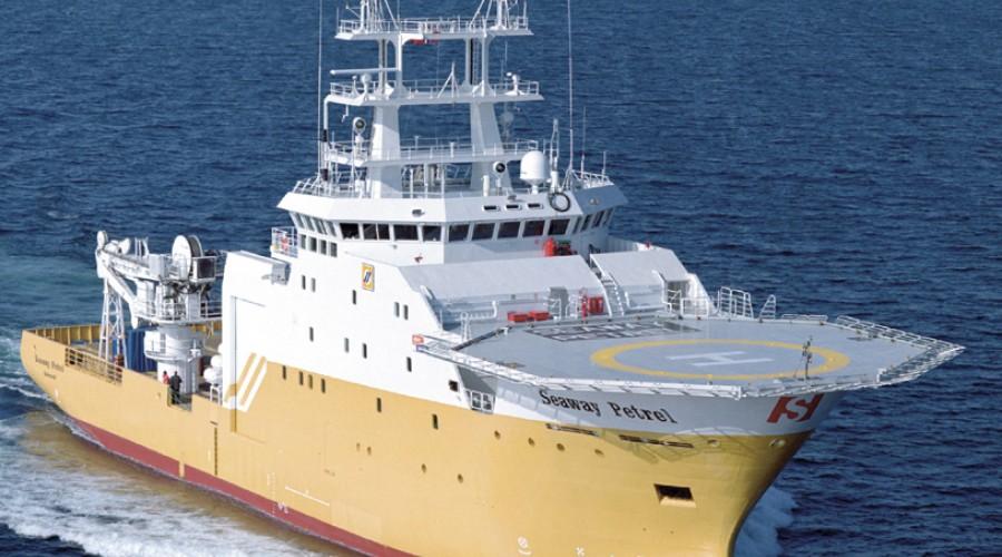Seaway Petrel