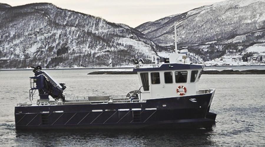 Sjøvåg