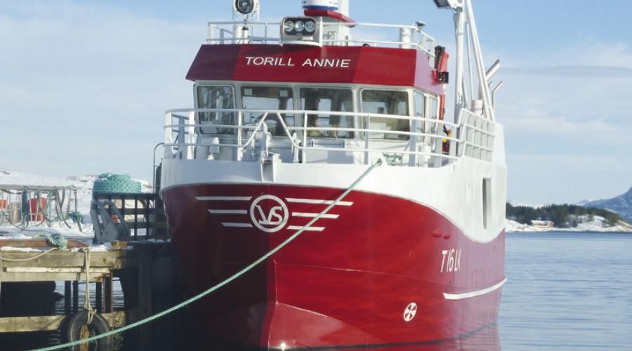 Torill Annie