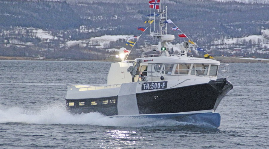 Foto: Ivar Jakobsen/Selfa Arctic